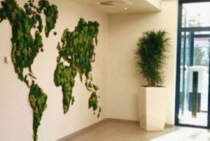 jardin-vertical-musgo
